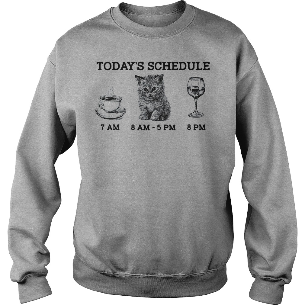 Today's schedule drink coffee cat and wine sweater