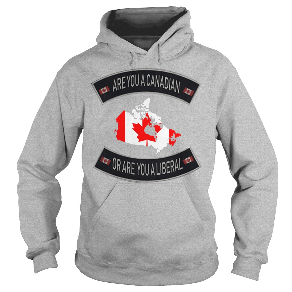 Are You A Canadian Or Are You A Liberal hoodie