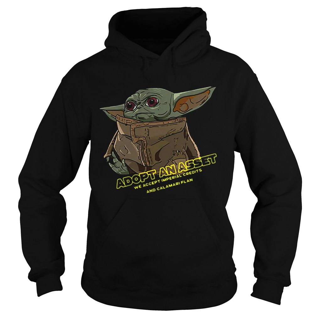 aby Yoda Adopt An Asset We Accept Imperial Credits  Hoodie
